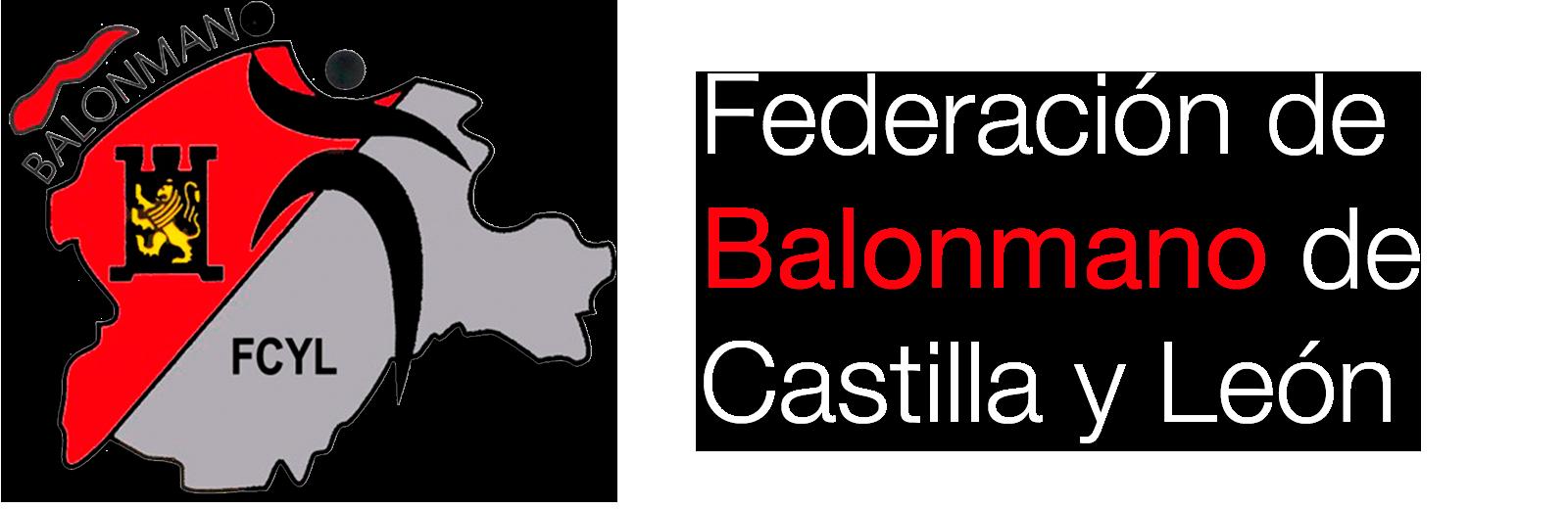 Delegación de Ávila de la Federación Territorial de Balonmano de Castilla y León