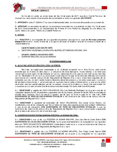 ACTA territorial 13