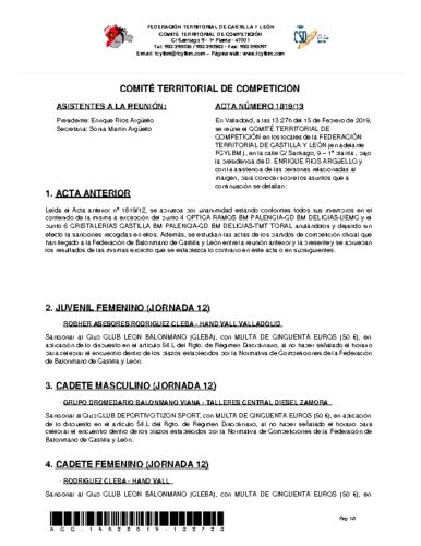 ACTA Nº 13 COMITÉ TERRITORIAL DE COMPETICIÓN