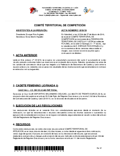ACTA Nº 19 COMITÉ TERRITORIAL DE COMPETICIÓN