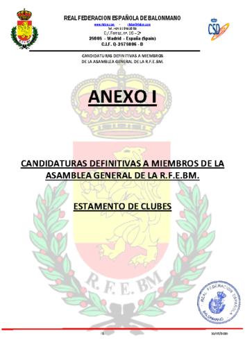 Anexo I Candidaturas Definitivas por Estamentos 10-07-2020